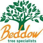 beddowtreeltd