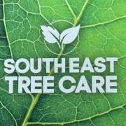 Southeast Tree Care Ltd
